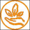 USDA certified Organic | True Vine Organics